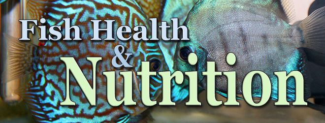 Fish Health Nutrition