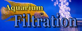 Aquarium Filtration
